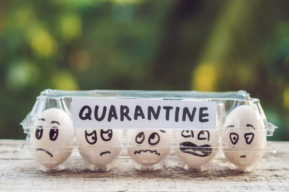 Quarantine rules for travellers explained